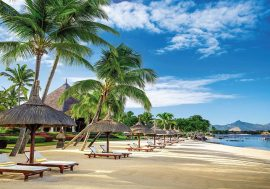 Mauritius Dubai Special