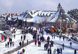 Golden Triangle Tour Shimla