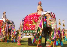 Royal Rajasthan Packages