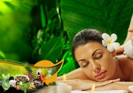 Ayurveda travel Tours of Kerala