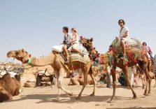Pushkar Travel Packages