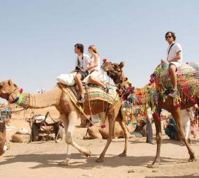 Pushkar Travel Packages