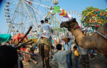 Pushkar Fair Date